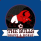 0_1546442929157_bulls.png